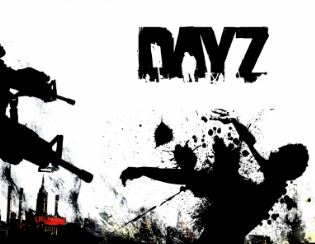 dayz all in one server